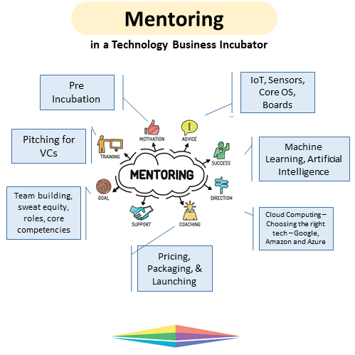 roles are many and the mentor should be able to handle all of them