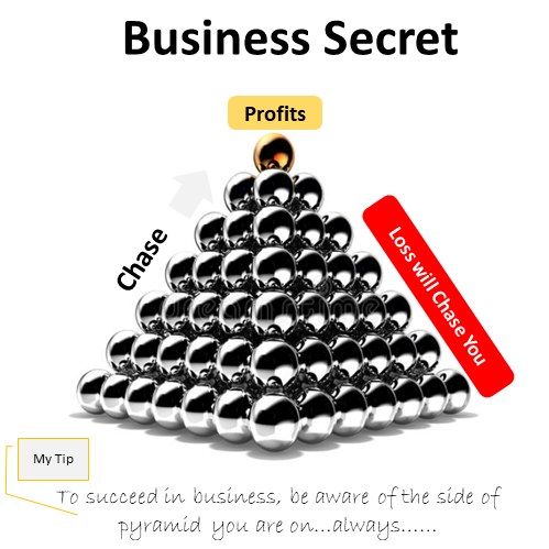 Business Secret To Succeed Be Aware of Which Side of the Profit You are On